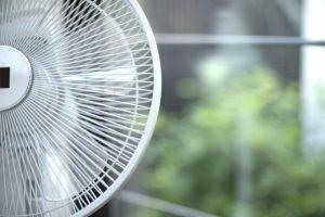 高級扇風機はどこが違う?扇風機選び10のポイントを解説!