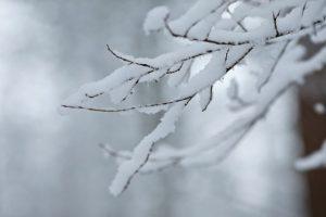 【大雪とは】いつからいつまで?読み方と意味・由来、行事・食べ物