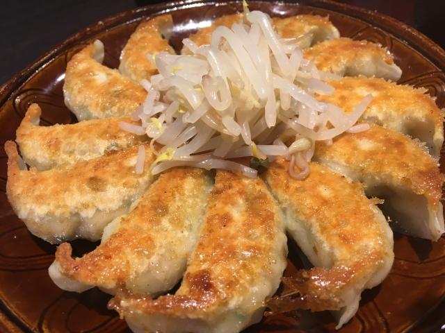 宇都宮餃子と浜松餃子の違いは?食べ比べてみるのも◎