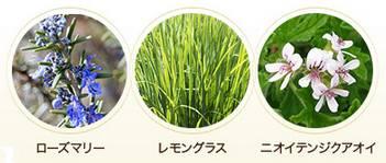 ビューティーオープナーはローズマリー油、レモングラス油、ゼラニウムなどの天然エッセンシャルオイルを配合