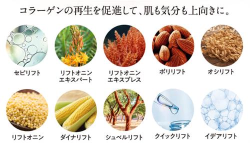 肌にハリを与える10種類の成分