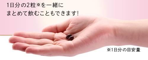美・スリムすっぽん黒酢生姜は一日2粒が目安